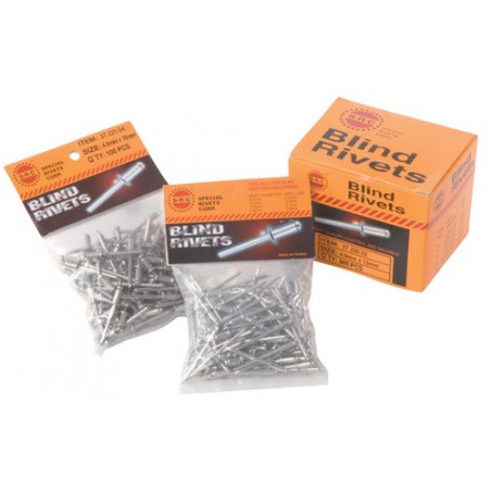 Rivets inox (100pcs)