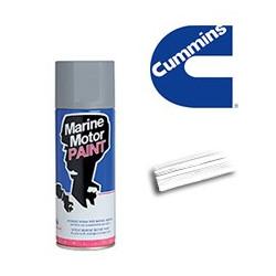 Spray pour moteurs CUMMINS